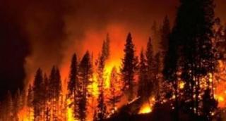 Incendi  clima  cambiamento  cnr