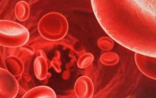 Anemia sintomatica  originator  epoetina alfa  scaccabarozzi  janssen
