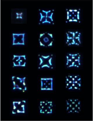 Dark-field(100X)