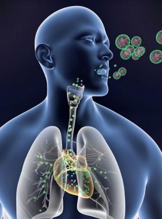 Nanofarmaci  cuore  cnr