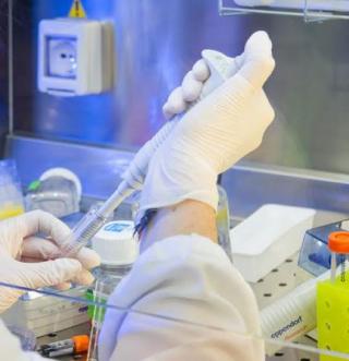 Ricerca  bambino  gesu  malattie rare  dallapiccola  diagnosi  geni