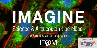 Image  ifom  musica  dna  proteine