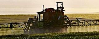 Legambiente, pesticidi, cibo, frutta, indagine, denuncia