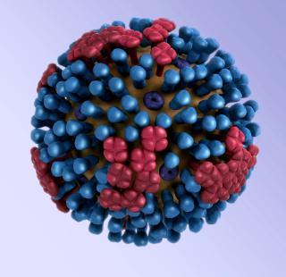Influenza  assosalute  automedicazione  pregliasco  virus