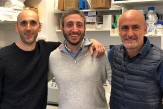 Peruzzotti-Jametti  frezza  pluchino  sm  sclerosi multipla  staminali  trapianto  terapia