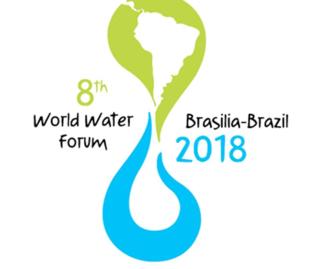 Acqua  forum  brasilia  svizzera