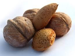 Noci  mandorle  consumo  coldiretti  pistacchio  indagine