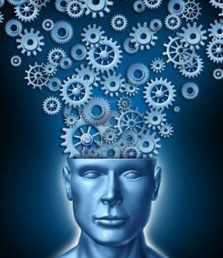 Cervello 3