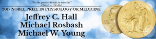 Nobel  prize  medicine  rosbash  hll  young  circadian rhythm  cell  sun  day  biological clock