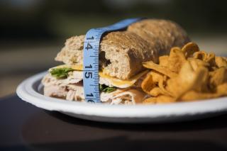 Gemelli  studio  dieta  geni  obesita'