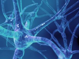 Esclerose-multipla01