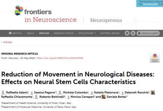 Fondazioni Vertical  Asamsi  ricerca  studio  milano  neurologia  movimento  muscoli