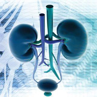 Medici-specializzati-in-urologia-a-Bologna