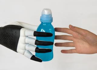 Cini  biorobotica  robot  presa  sant'anna  pisa