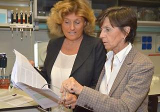 Mario negri  ricerca  giavazzi  benigni  remuzzi  tumore  cancro  rene  farmacologia