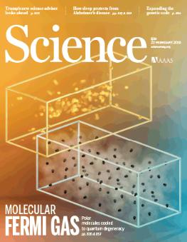 Hachimoji  dna  rna  hoshika  nucleotidi  lettere  Firebird Biomolecular Sciences LLC