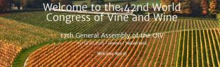 Svizzera  viticultura  iov  congresso  vino  vite  ginevra