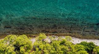Riscaldamento  adriatico  cnr  acqua  temperatura  Earth System Science Data  mediterraneo