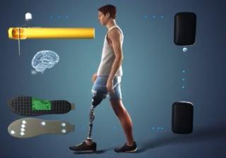 Arto fantasma  camminare  protesi  eth  politecnico zurigo  losanna  nature medicine  petrini  SensArs  feedback sensoriale  neurofeedback  nervi  ginocchio  friburgo  protesi  neurostimolazione  EPFL