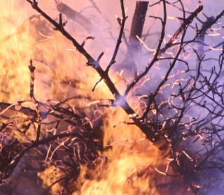 Incendio  coldiretti  caldo  lombardia  dati  italia