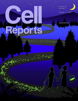 Proteina  Sam68  sette  gemelli  cattolica  ovulo  fertilità  fecondazione  spermatozoi  ricerca  Cell Reports