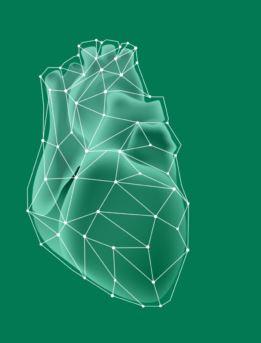 Humanitas  gavazzeni  bergamo  cuore  robot  intervento