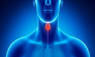 Endrocrinologia 2 tiroide