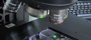 Microscopio 2