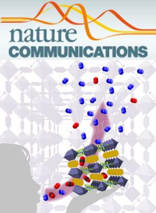 Nature communications  fibrosi  timo  atrofia  sistema immunitario  linfoci  sangue  distrofia  statale milano  dmd  ricerca