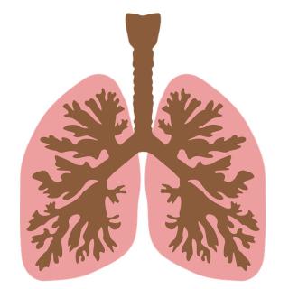Asco  aiom  cinieri  curigliano  tervolt  ricerca  2020  tumore  cancro  polmone