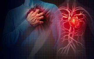 Vaccino  influenza  infarto  ricerca  esc  2021  congresso  latvia
