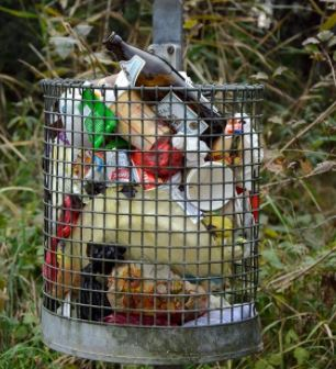 Earth Overshoot Day  spreco  cibo  indagine  codiretti  Global Footprint Network  avanzi  poveri  rifiuti