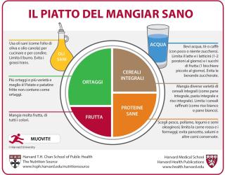 Harvard  dieta  mangiar sano  dieta mediterranea  verdure