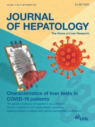 Yale  fegato  coronavirus  covid  papa giovanni XXII  bergamo  Journal of Hepatology  vascolarizzazione  il-7