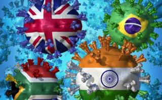 Vaccino  vaccinazione  mutazion  variante  sudafricana  indiana  inglese