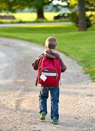 Telaio  bretelle  scuola  sitop  schiena  consigli  zaino  zainetto  alunni  bambini  gigante
