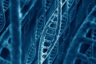 Should-we-change-our-genes
